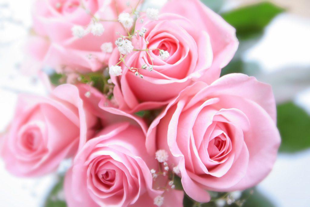 バラの花束保存 プロポーズ