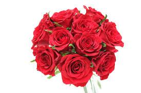 プロポーズのバラの花束保存