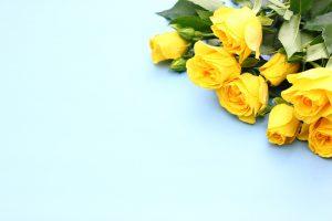 薔薇の花束保存