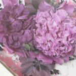 レカンフラワー豪華な芍薬作品集